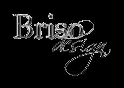 Briso Design